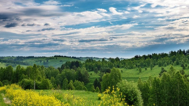 пейзаж, лето, облака  Родные просторы! photo preview