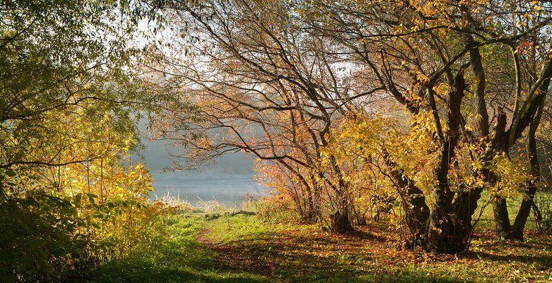 Осень торжествует...photo preview