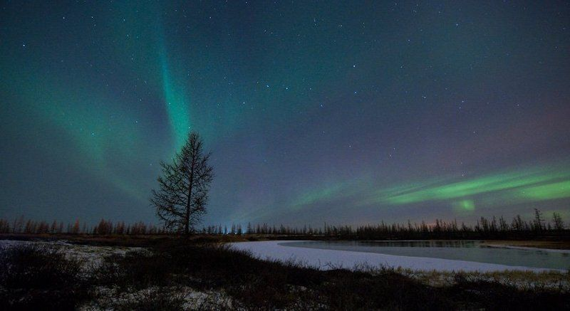 aurora borealis, северное сияние, природа, ночной пезаж, север Aurora Borealis#7(открытие сезона2010-2011)photo preview