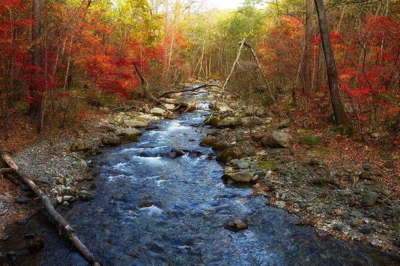 чистоводное, тайга, осень, скалы, приморский край, ручей Чистоводный ключphoto preview