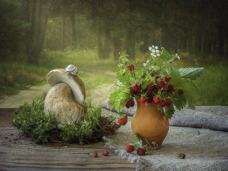 натюрморт, лето, лес, грибы, ягоды, земляника, улитка Истории летнего лесаphoto preview