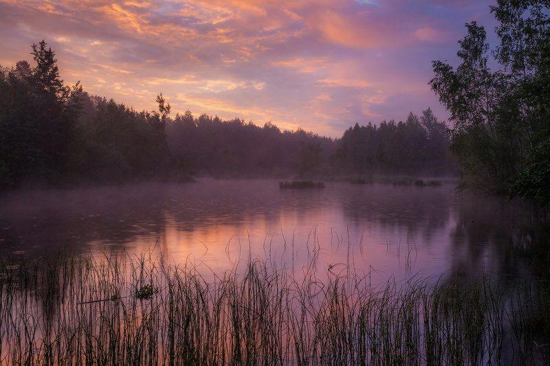 рассвет, озеро, утро, дождь Таинство рассветаphoto preview
