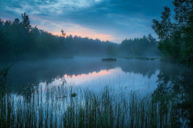 утро, лето, озеро, тишина, природа, благодать Дивное утроphoto preview