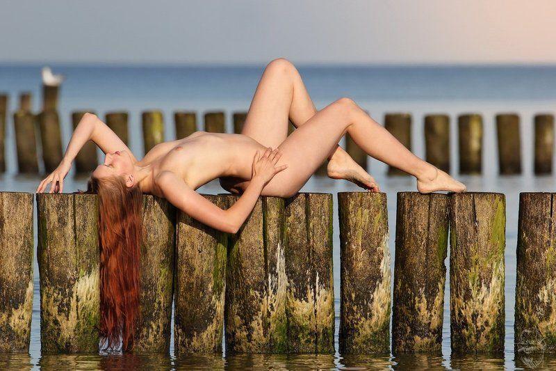sea, beach, nude, girl, artnude, art, nature Morgenruhephoto preview