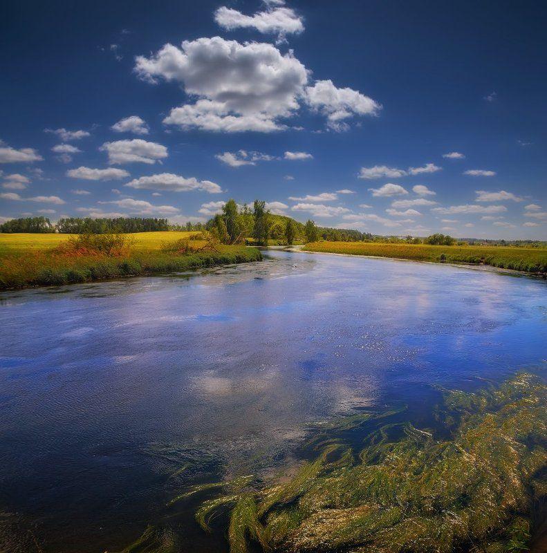 река, полдень, лето, Голубые отраженияphoto preview
