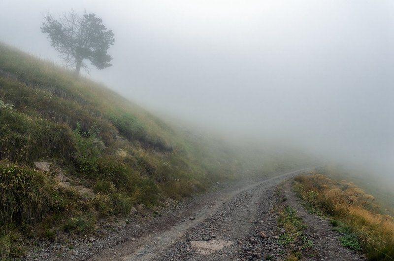 Туманной тропой Приэльбрусьяphoto preview