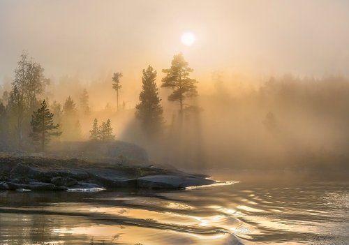Туманный бархат солнца