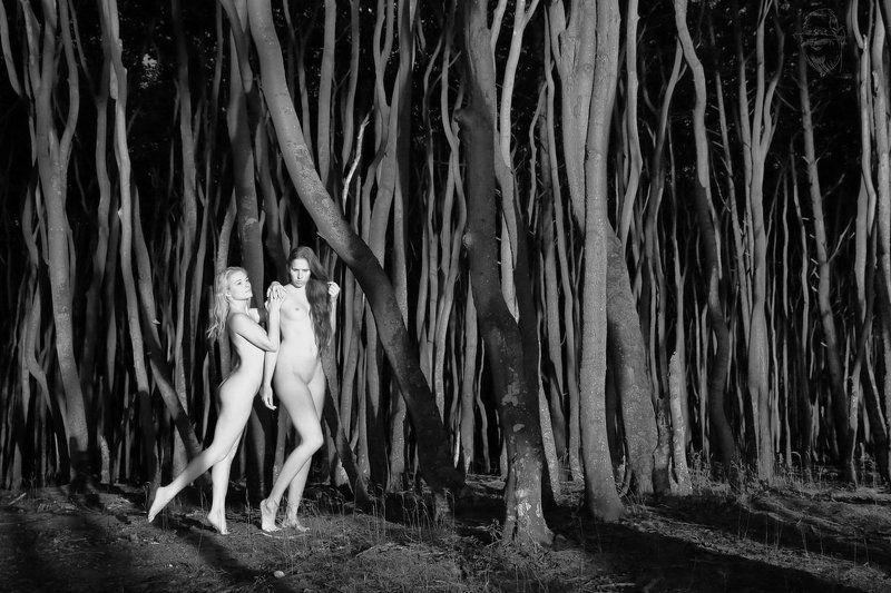 nude, girl, artnude, art, nature zu zweitphoto preview