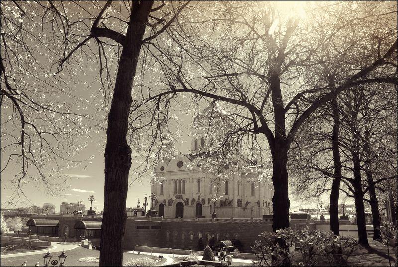 moscow, храм, христа, спасителя ---= +++ =---photo preview
