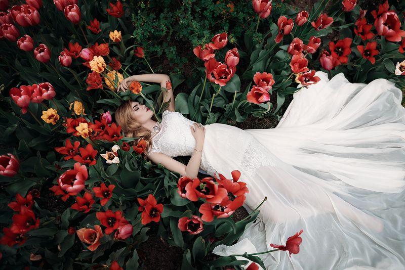 Nikon, D750, 24-70, платье, тюльпаны, портрет, девушка ***photo preview