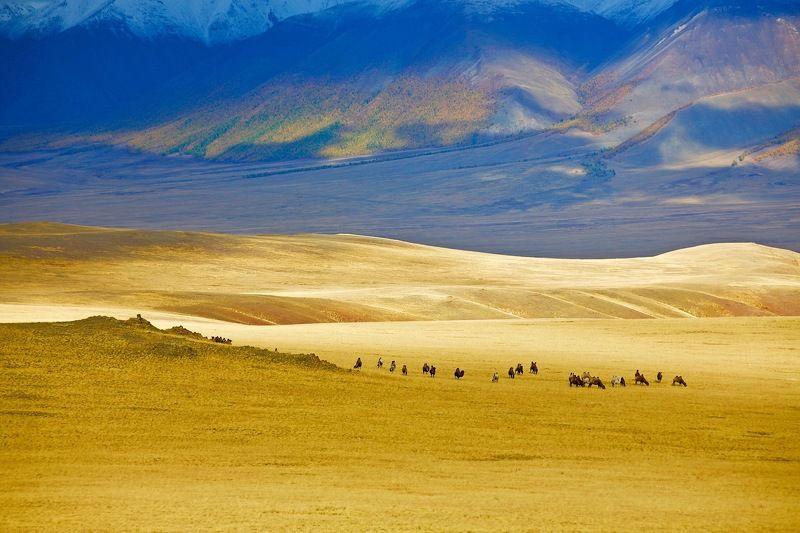 сентябрь ,закат,горы Златые горы.photo preview