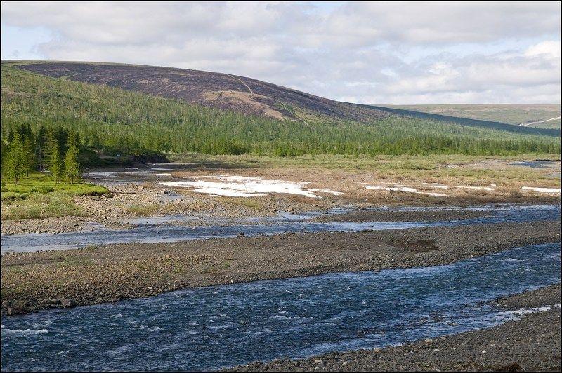 Таймыр,река,лето У рекиphoto preview