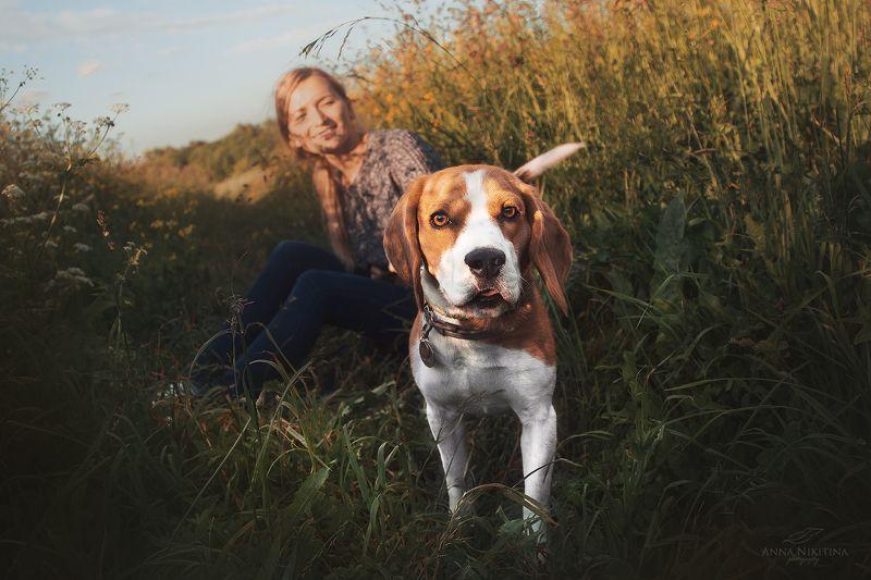 собака, бигль, собака и хозяин, прогулка с собакой, гончая Луиза и Интиphoto preview