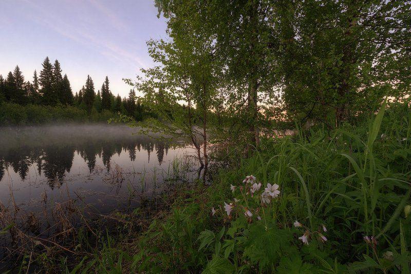 печора,коми,север,белые,ночи В ожидании рассветаphoto preview