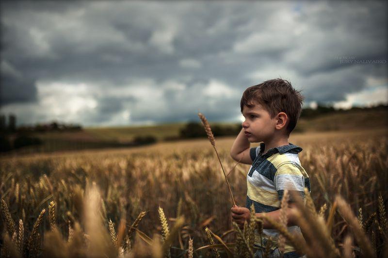 лето и непогода..photo preview