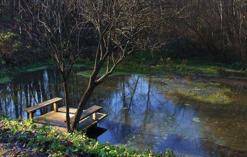 пруд мостки дерево осень photo preview