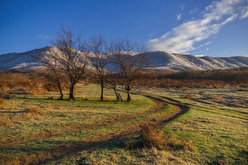 осень горы солнце прошлогодняя осень в поселке Папоротныйphoto preview