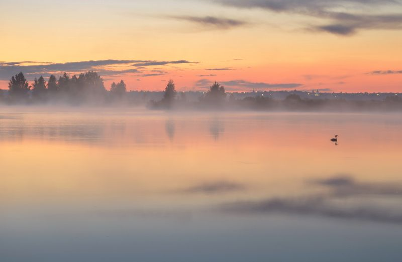 после заката, туман, чомга, озеро, отражение, тишина, июль Тихий вечерphoto preview