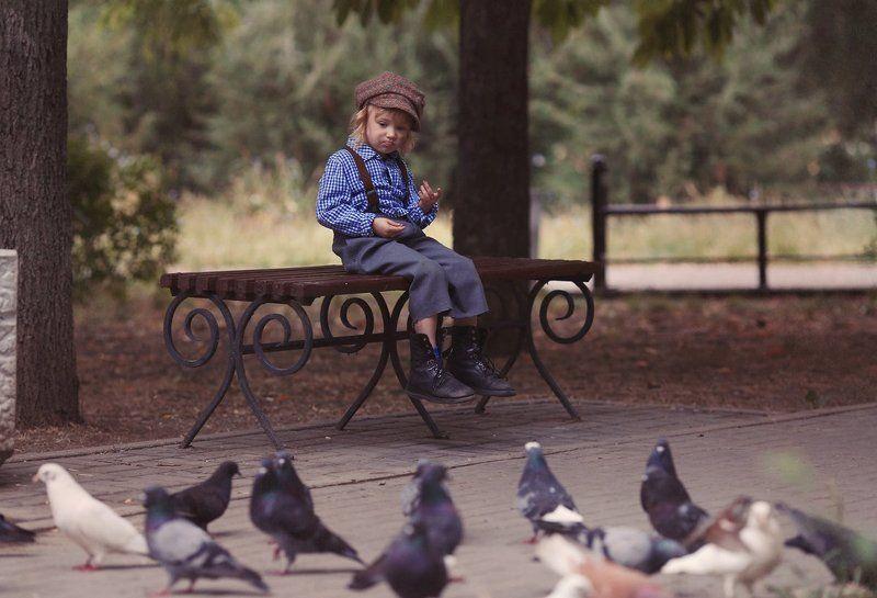 Ну держитесь.голуби.photo preview