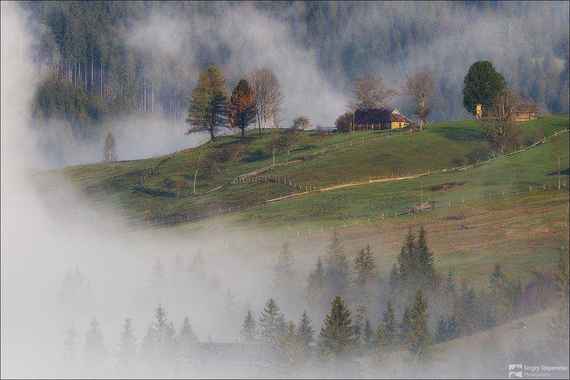 Жизнь в облакахphoto preview