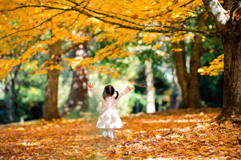 autumn, leaves, yellow, kid, dancing, childhood, girl, celine, emjoy ***photo preview