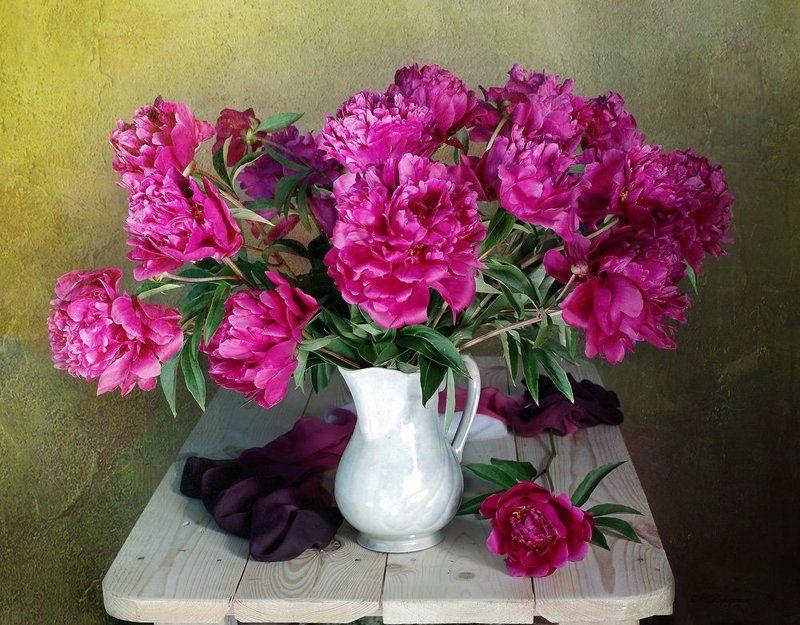 цветы , натюрморт с цветами , лето ,вера павлухина ,поионы, Лохматая игривость пионовphoto preview