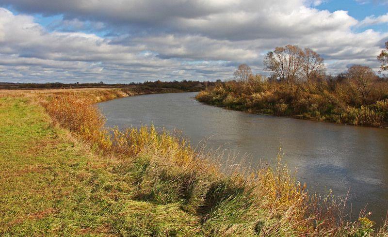 осень, октябрь, берёзы, река Октябрьphoto preview
