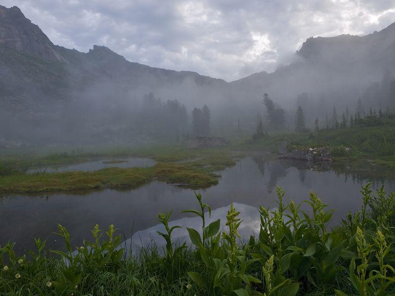 ...Лирика туманного утра...photo preview