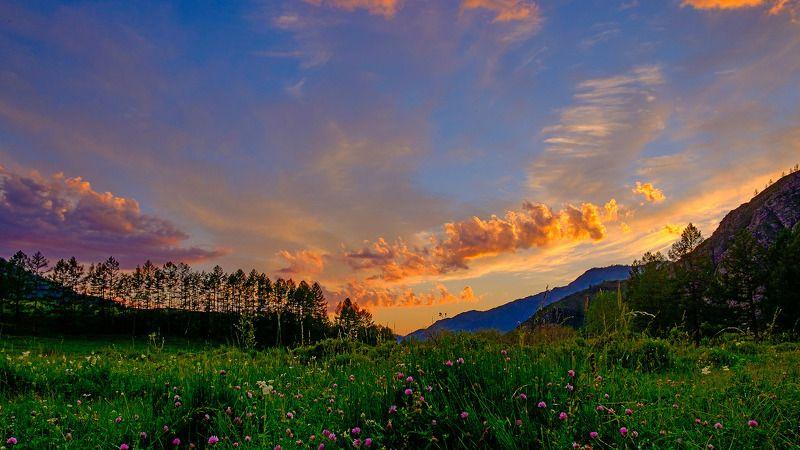 пейзаж, лето, Горный Алтай На закатеphoto preview