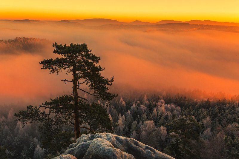 landscape,canon,winter,awakening Untitledphoto preview