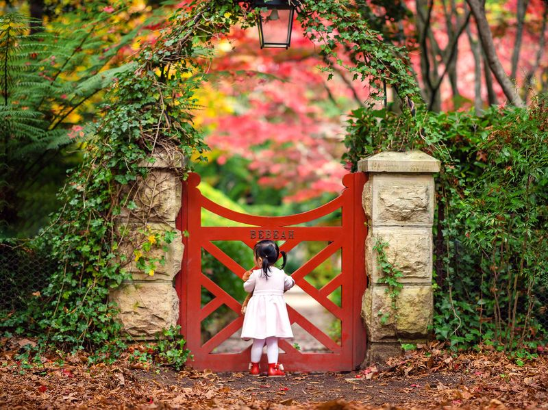 kid, child, girl, autumn, leaf, leaves, red, garden, nature                                                                                                                                                                                                     bebathphoto preview