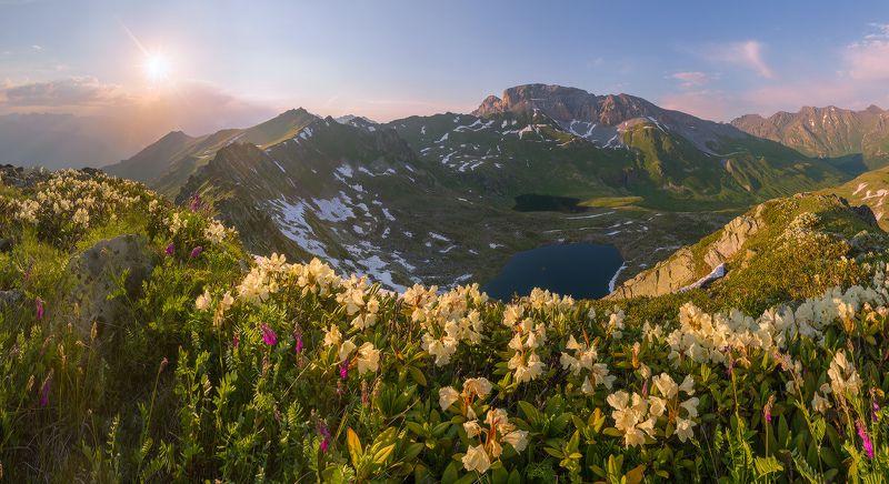 западный кавказ пхия скала загедан пятиозёрье лето июнь вечер В краю рододендронов и озёрphoto preview