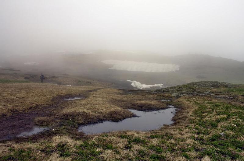 туман, вода, цветы, горы, утро, снег ТУМАН...ВОДА...ЦВЕТОВ НЕМНОЖКОphoto preview