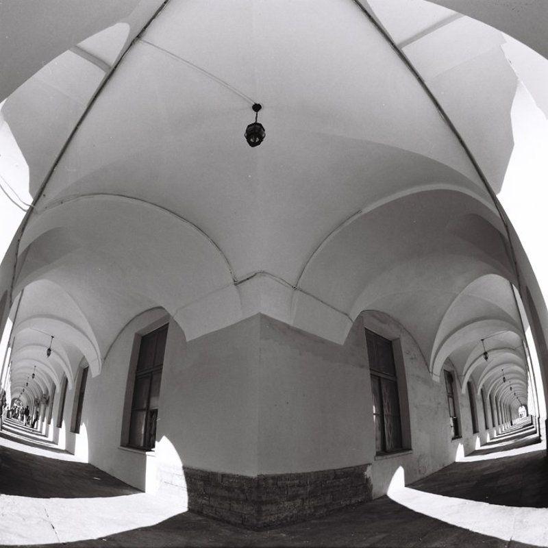 6х6,фотоплёнка,негатив, b&w Два пути.photo preview