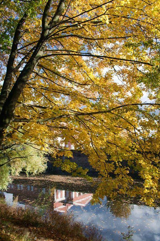 Уж небо осенью дышалоphoto preview