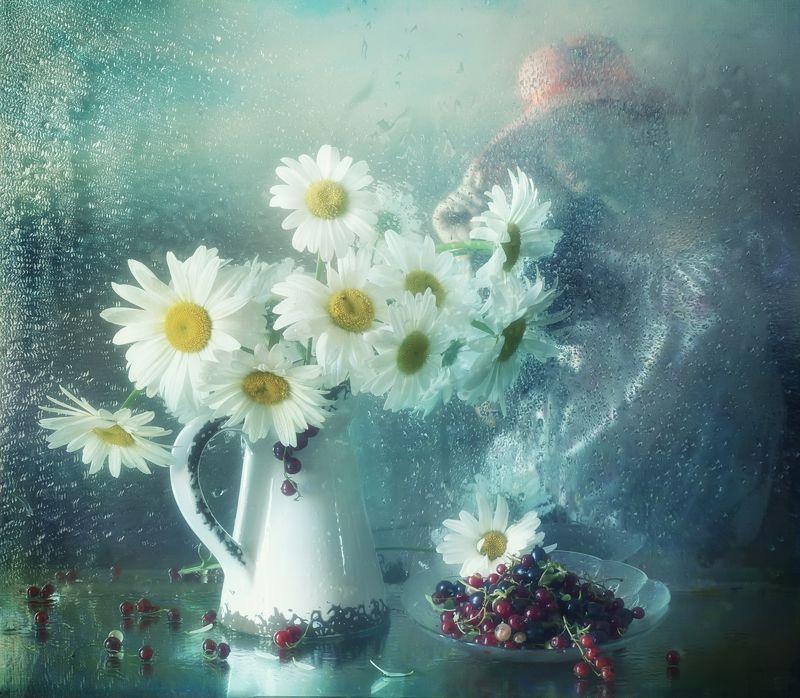 лето, букет, ягоды, цветы, ромашки Летний сон..photo preview