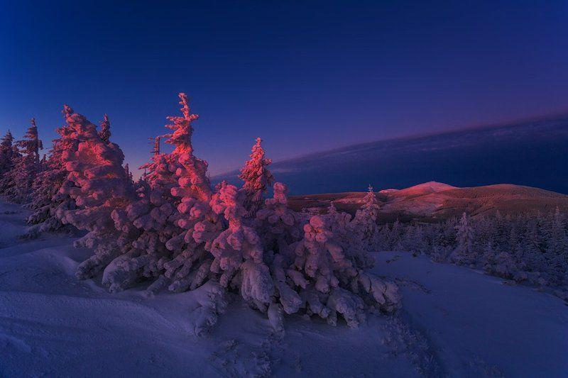 landscape,canon,winter Golden Pink Sunrise Hues...photo preview