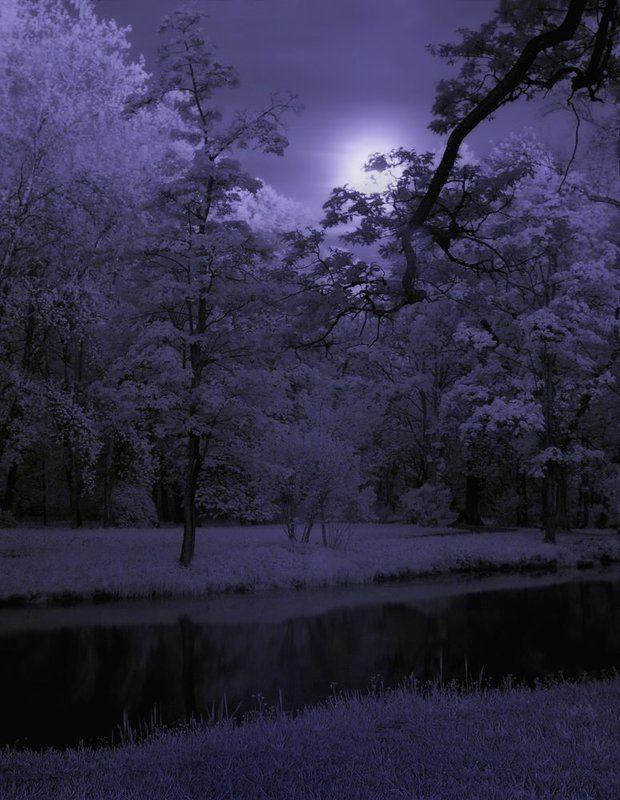 infrared, полнолуние, длинная выдержка, световая кисть, long exposure, light painting, moon night, инфракрасный,  инфракрасное ~133~photo preview