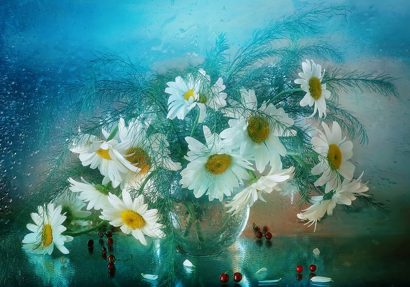 ромашки, лето, букет, цветы, акварель Ромашки вееромphoto preview