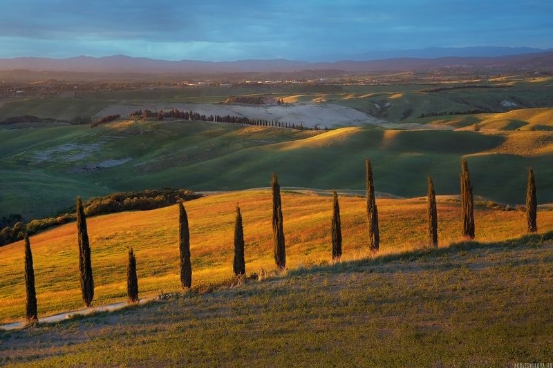 tuscany, italy, nature, travel, путешествие, тоскана, природа, закат Under the Tuscan Sunphoto preview