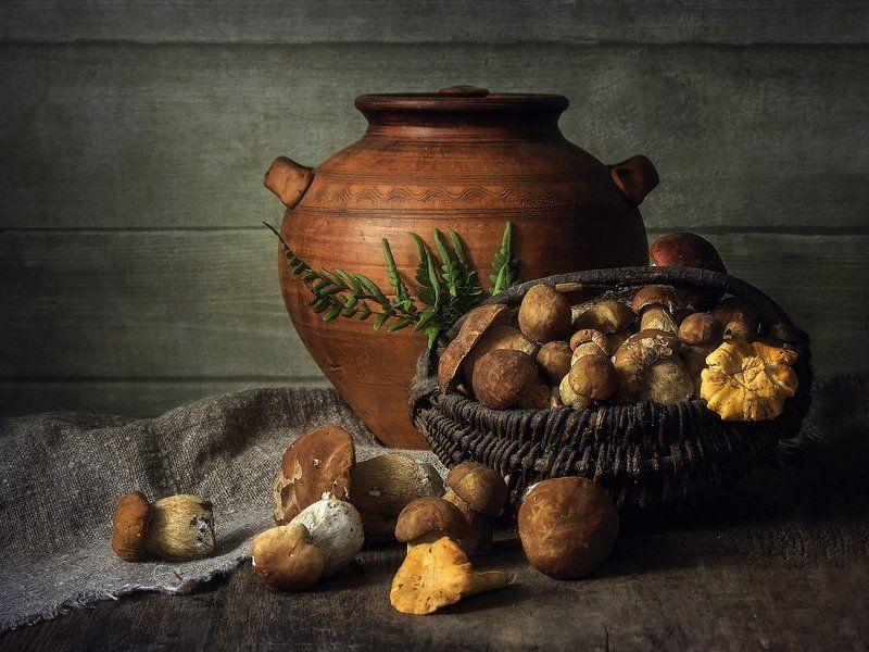 натюрморт, грибы, лето, корзинка, глиняный горшок, папоротник Грибная пораphoto preview