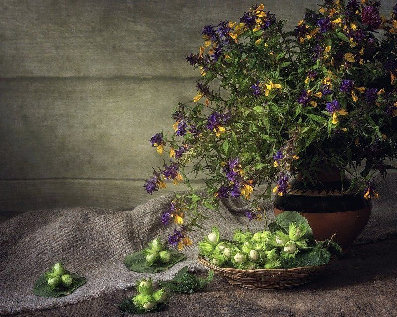 натюрморт, лето, лесные цветы, лесные орехи, букет, корзинка С молодыми лесными орешкамиphoto preview