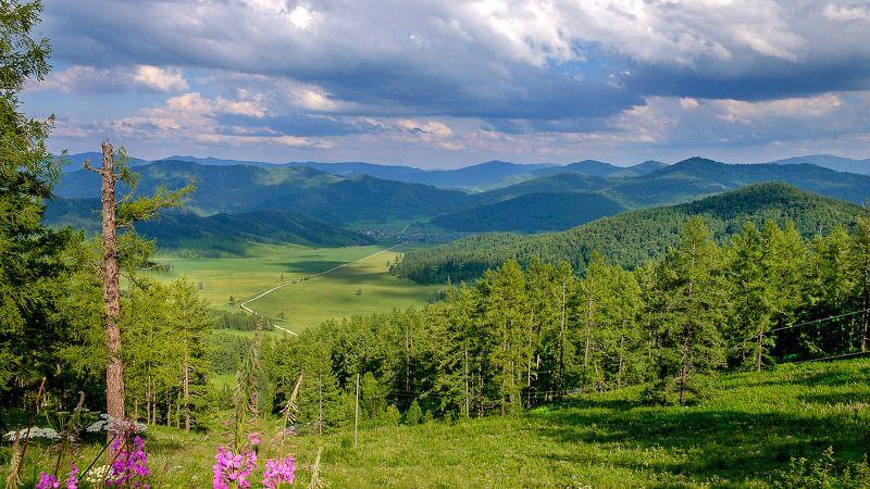 пейзаж, лето, Горный Алтай  Перед грозой. photo preview