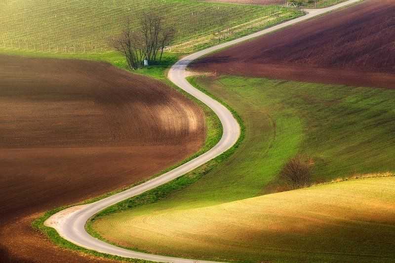 landscape,canon,moravia,light,spring The Moravian Serpnt IIphoto preview