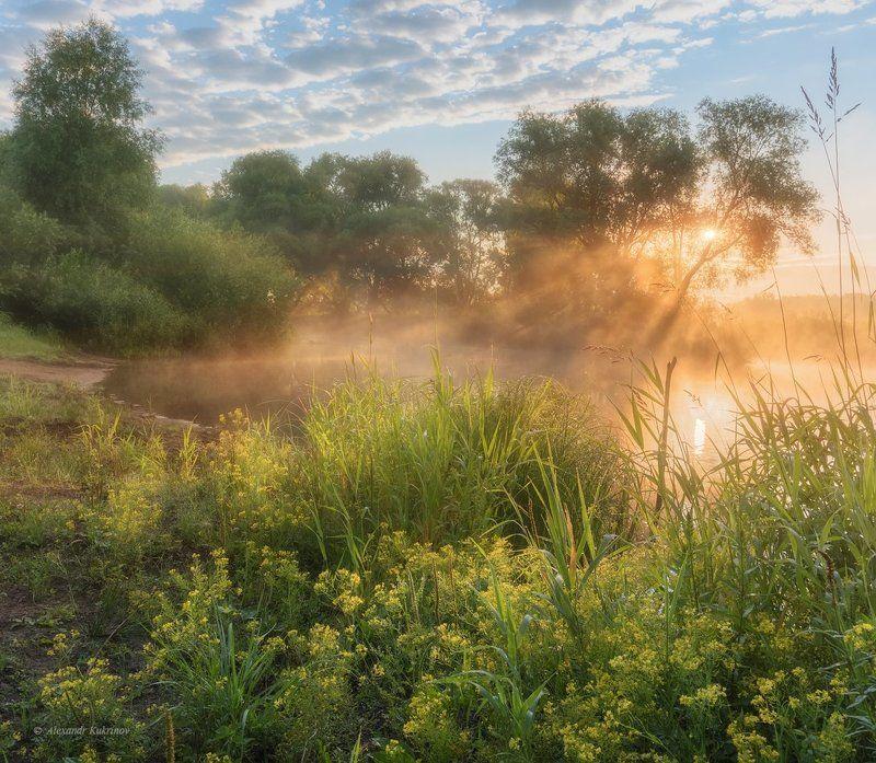 пейзаж, рассвет, угра Утро в Заречье...photo preview