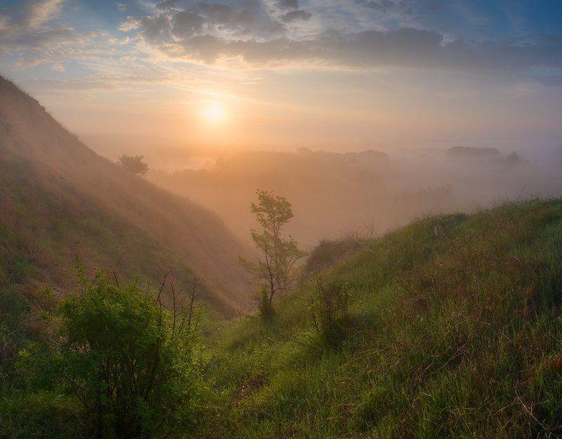 fog, morning, panorama, sun, sunrise, панорама, рассвет, свет, солнце, туман, Утро, Misty ***photo preview