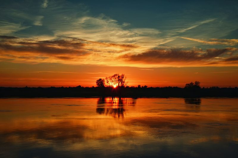 sunsed sundown odra river poland red sun water tree clouds magic Sunset over the Odra riverphoto preview