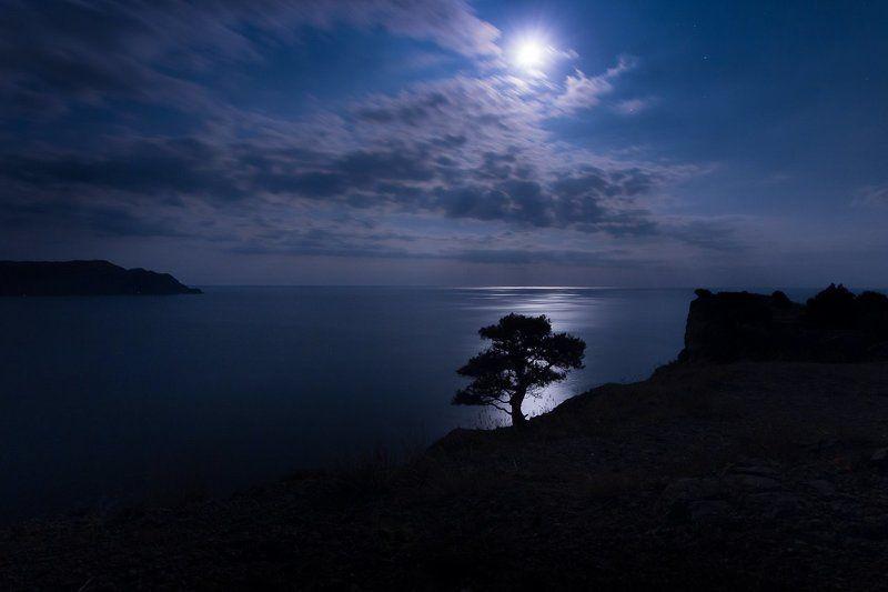 Лунная ночь на Черном море.photo preview