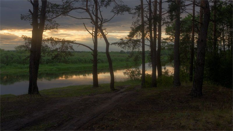 Пейзаж с силуэтом леса у реки photo preview