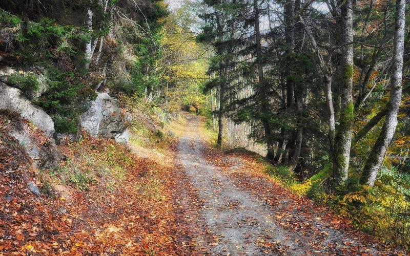Когда с осенью по пути...photo preview